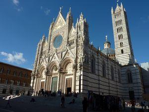 Kathedraal Siena Italië Europa